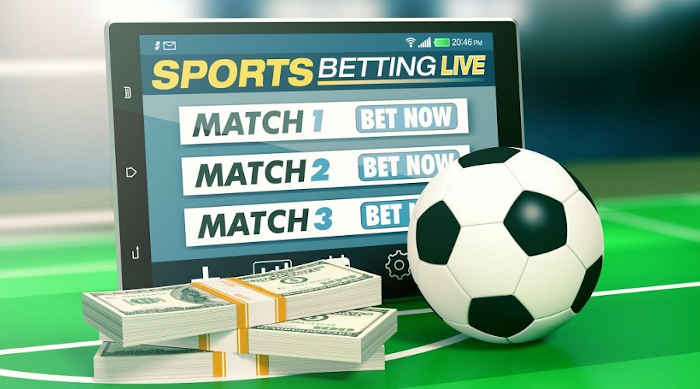 Online Betting Business
